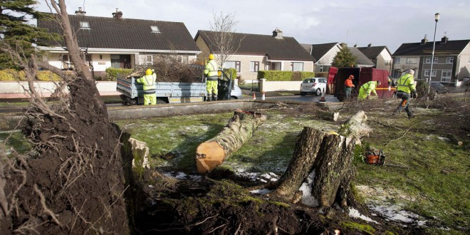 County Council workers cleaning up fallen trees at Kincora Park Ennis.