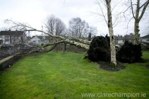 Storm Damage 9
