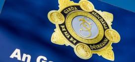 Garda alert on stolen number plates