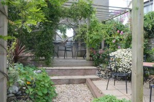The garden at Susie's tearoom, Appledore.
