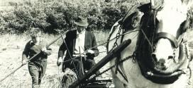 Working in bygone days in Ennistymon
