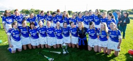 Kilmaley coast to senior camogie title