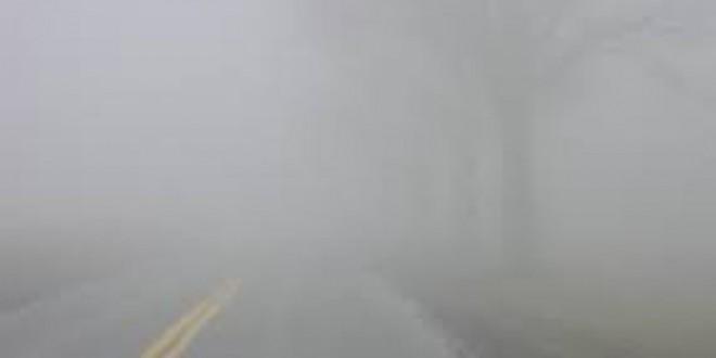 RSA Alert: dense fog hazard