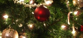 HSE under fire over €2,500 Christmas tree