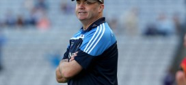 Daly to head Limerick's hurling academy
