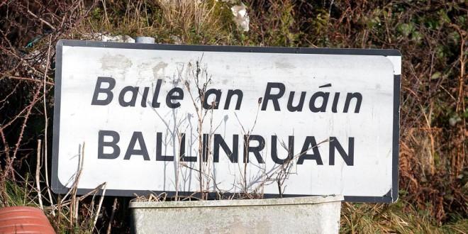 Horses starve to death in Ballinruan