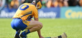 Limerick end Clare's Munster championship campaign