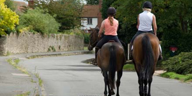 Road safety for drivers and horses