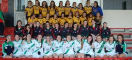 26 clubs to take part in Kilmurry-Ibrickane organised All-Ireland 7s