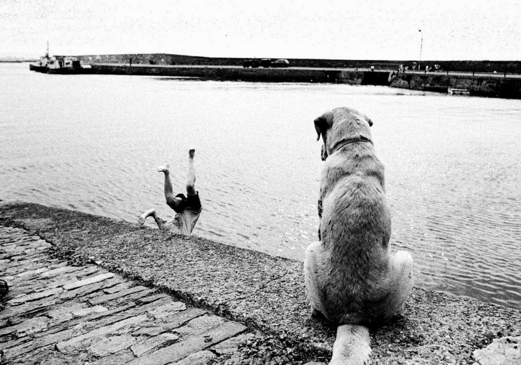 Fetch Boy !....Fetch! PPAI Feature picture of the year 2007. Photograph by John Kelly.