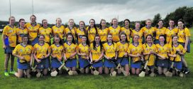 The Clare minor camogie team.